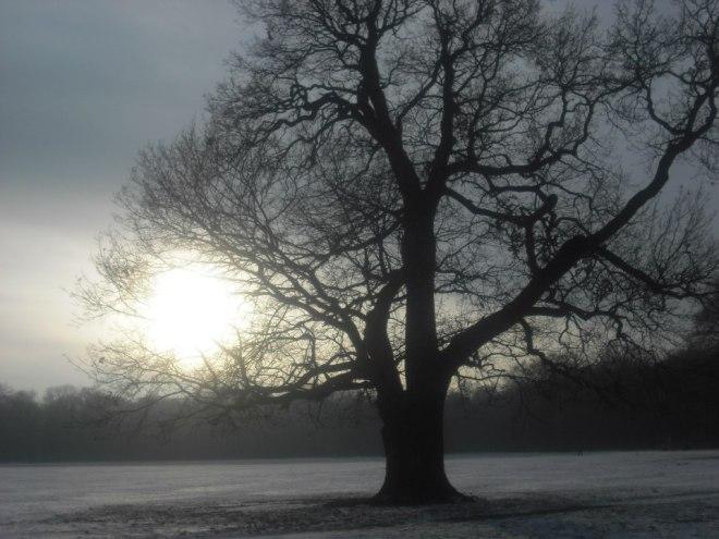 Winter-B