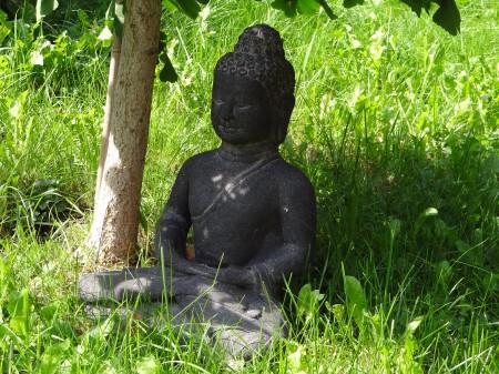 buddhafigur-gingkobaum_1421